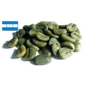 Arabica Honduras SHG EP - 500g (€16,90/kg)